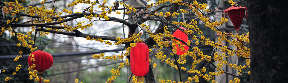 DL Management and Realty Services LLC